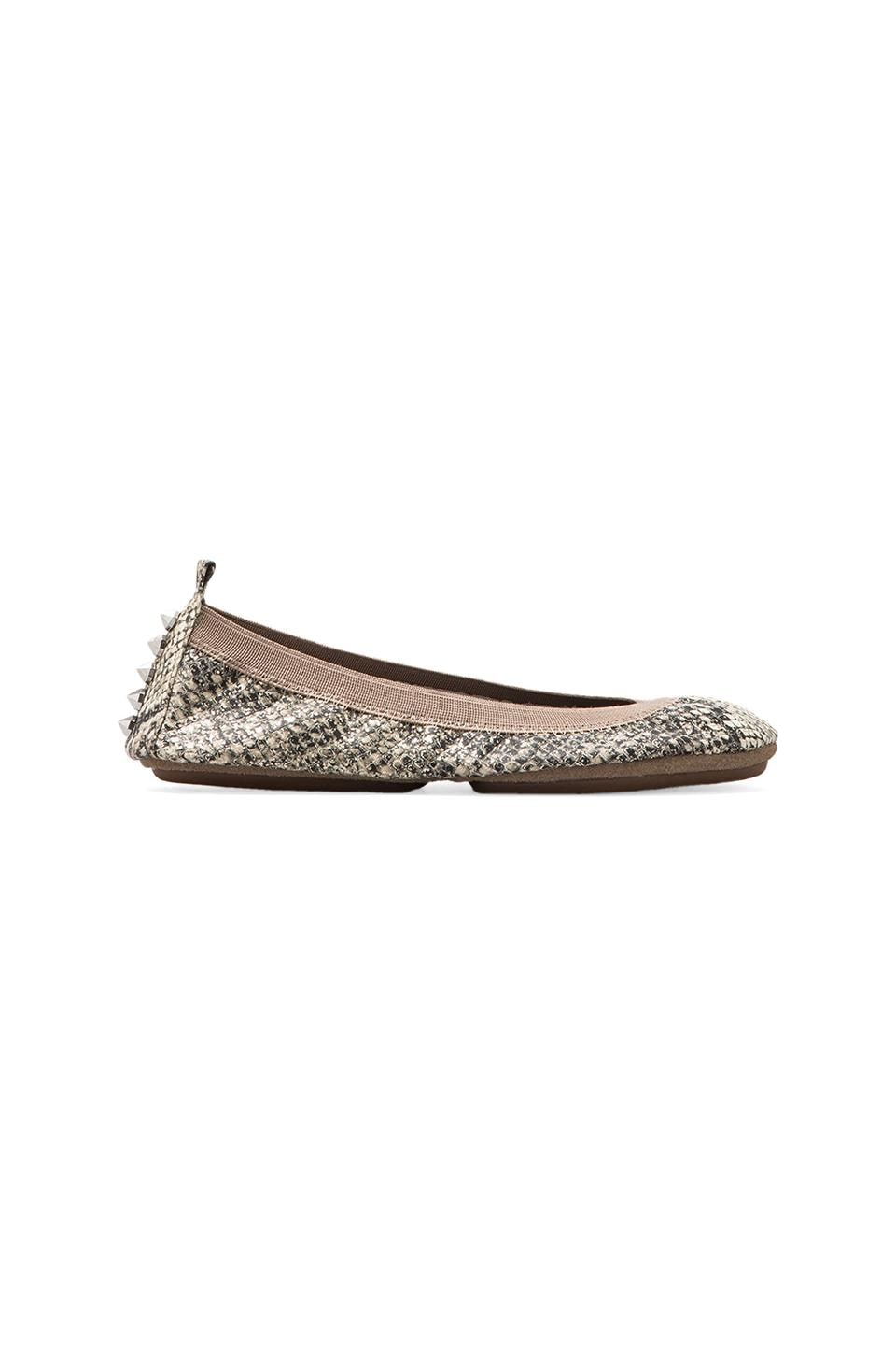 Yosi Samra Studded Back Ballet Flat in Silver Serpent