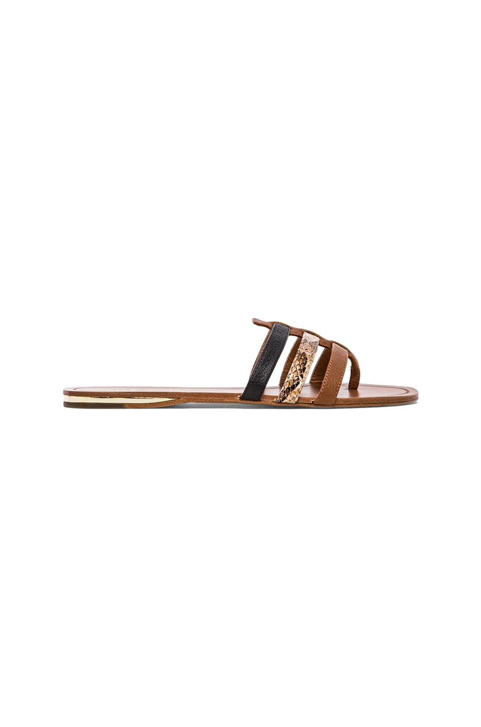 Yosi Samra Corey Patent Leather Sandal in Natural