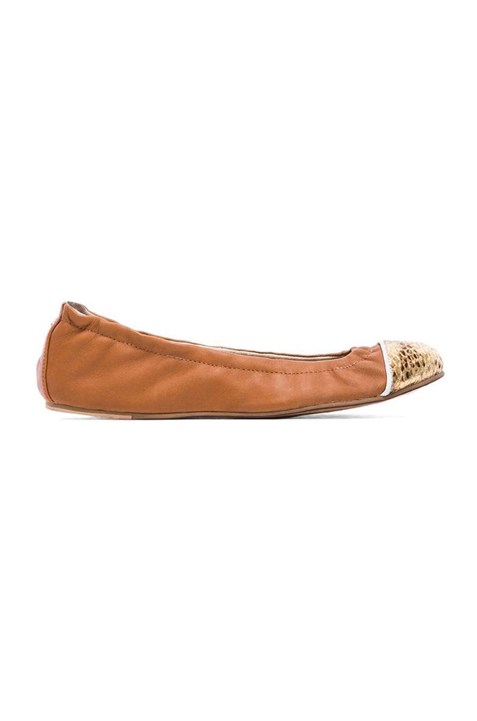 Yosi Samra Marni Flexible Contrast Flat in Whiskey & Gold