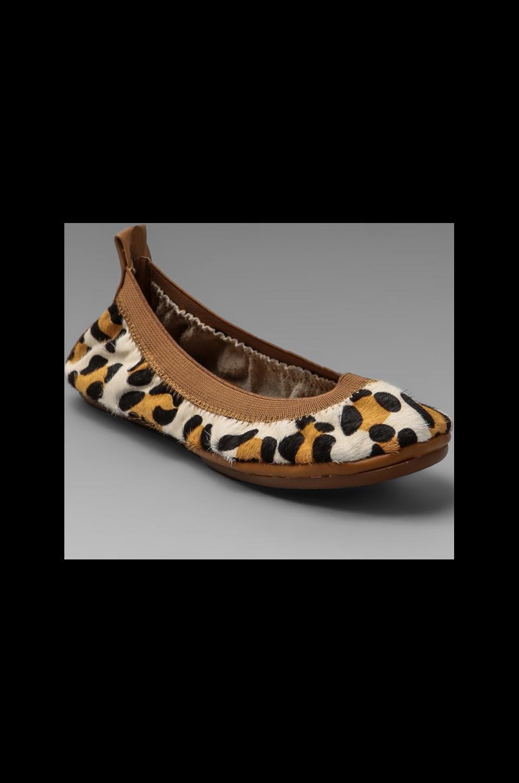 Yosi Samra Leopard Print Flat in White Leopard/Sand