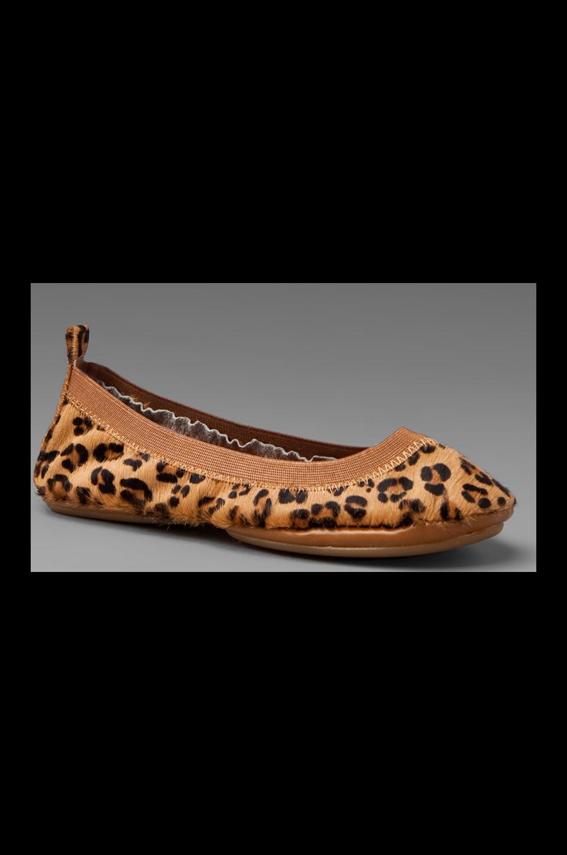 Yosi Samra Calf Hair in Leopard