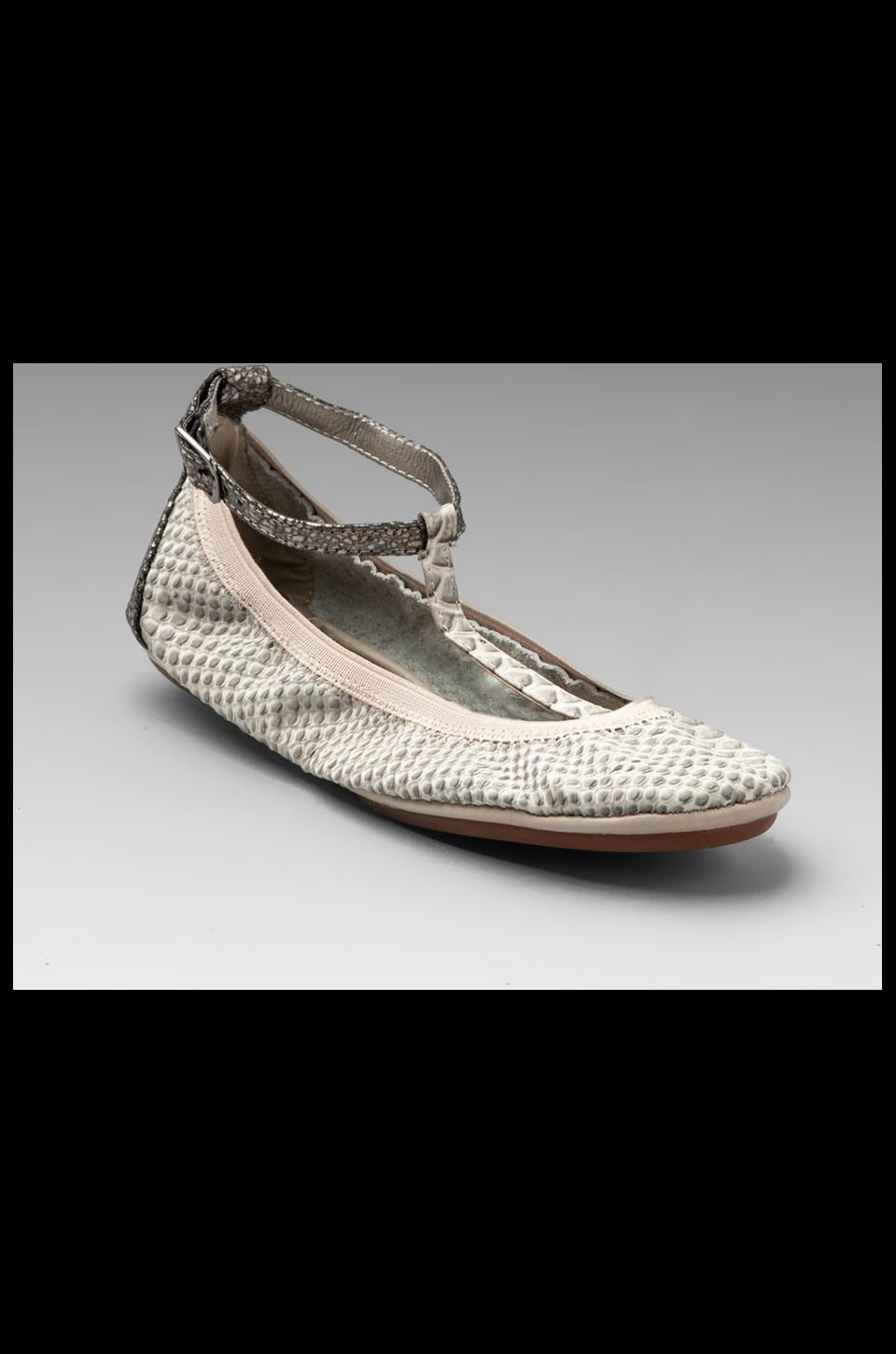Yosi Samra Crock Strap Ballet Flat in Cream/Pewter