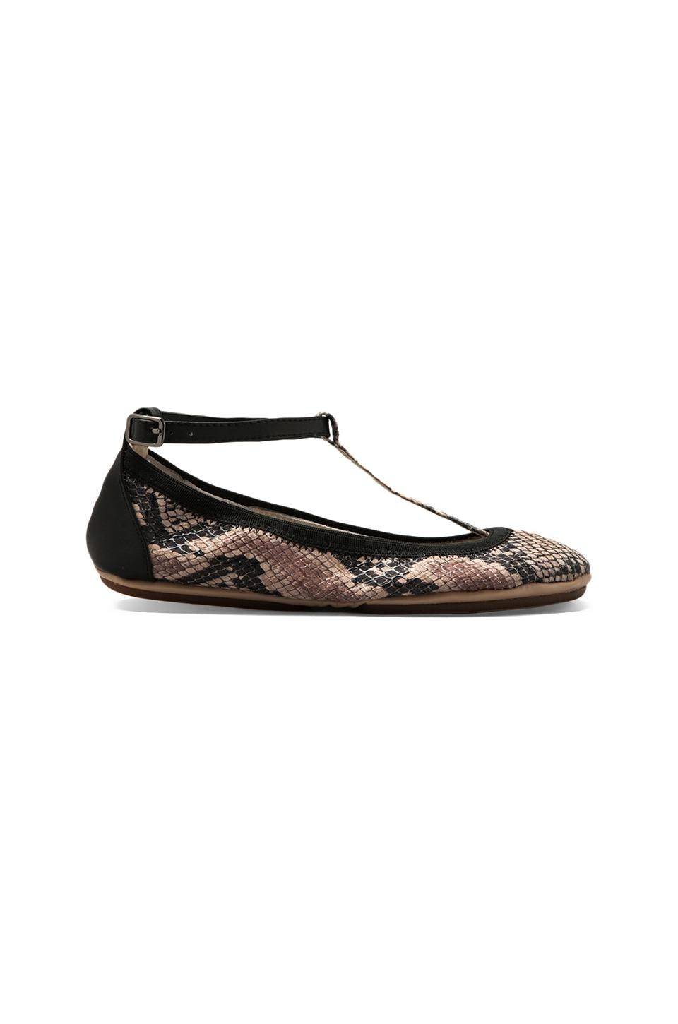 Yosi Samra T Strap Leather Ballet Flat in Serpent/Black