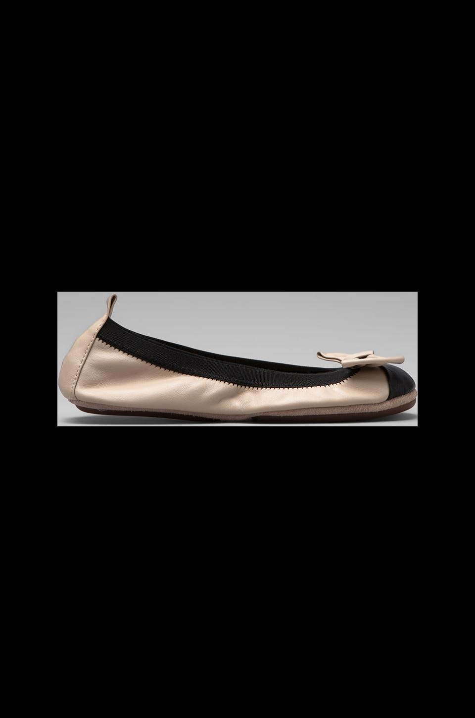 Yosi Samra Two Tone Cap Toe Ballet Flat in Fawn/Black