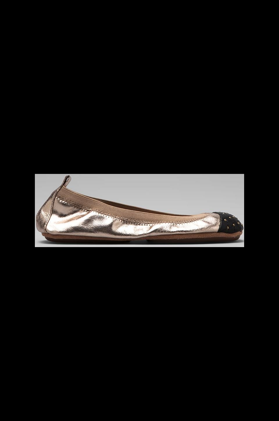 Yosi Samra Two Tone Ballet Flat in Bronze/Black