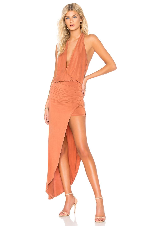 Young, Fabulous & Broke Birdseye Dress in Bronze