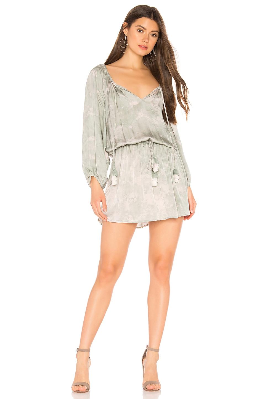 Young, Fabulous & Broke Junia Dress in Light Palm Micro Wash