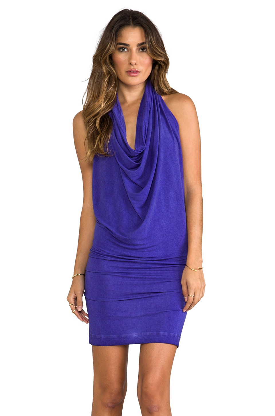 Young, Fabulous & Broke Benette Vintage Dress in Purple