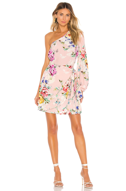 Yumi Kim Studio 54 Dress in Lovers Bouquet Pink