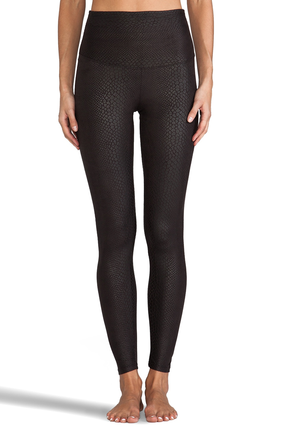 Yummie by Heather Thomson Lydia Python Legging in Black