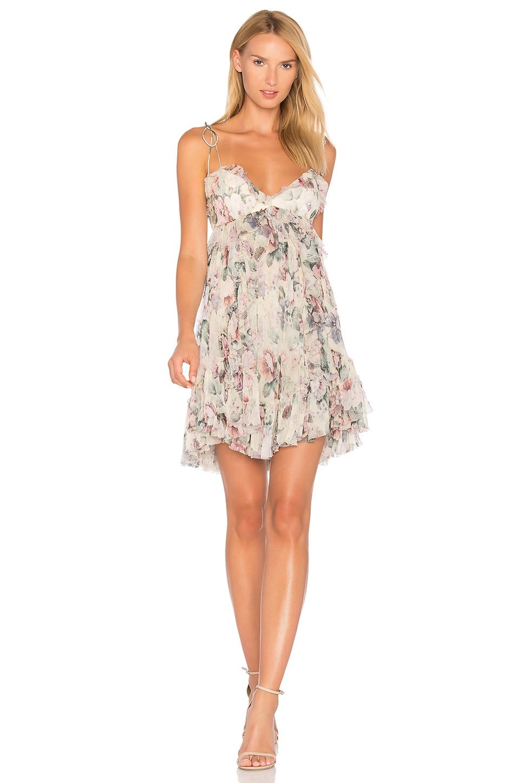 Zimmermann Jasper Floral Dress in Floral