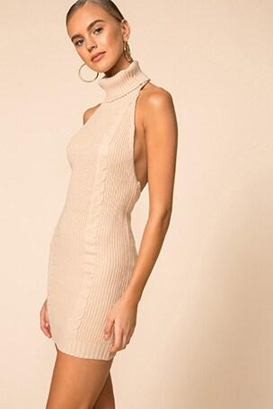 Julian Turtleneck Sweater Dress